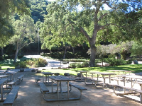 A whole bunch of picnic tables, at Area Three of Toro Canyon Park.