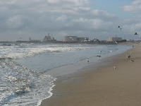 Port Hueneme Naval Station in the distance- lots of seagulls overhead.