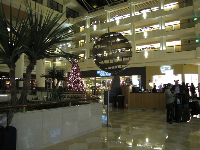 Christmas tree in the main lobby.