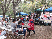Shady stage at the French Festival.