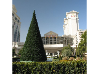 Formal gardens outside Caesar's Palace, as seen from The Strip.