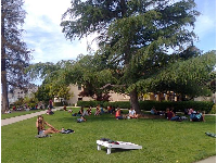 Students hanging out on the lawn.