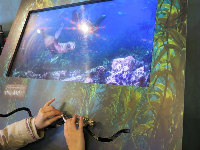 Kids can move the scuba diver and watch the screen change.