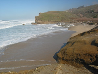 The rugged beauty of Pescadero State Beach.