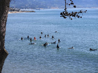 Surfing lessons at Leadbetter Beach.