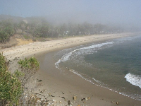 Foggy day at Refugio Beach- looking down on the beach from the hike on the western headland.