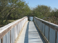 Looking back along the boardwalk.