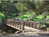 The pedestrian bridge is a favorite with park visitors.