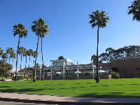 Palm trees in front of De La Guerra Dining Commons.