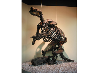 Giant ground sloth.