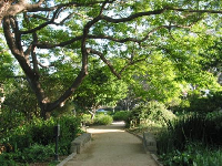A gorgeous path to walk along with your lover.