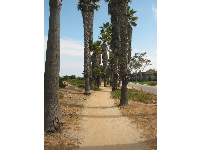 Palm-lined walkway on Lagoon Rd, with sweeping views of Goleta Beach!