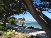 Walk the bike path to the west of Fisherman's Wharf for gorgeous views of the blue-green water.