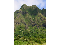 "The views of the Koolau Mountains at Kualoa Ranch, where TV show ""Lost"" was filmed."