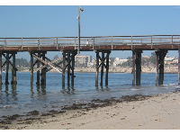 Goleta Pier, with UCSB in the background.