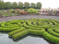 The maze of floating hedges at the Getty Center gardens.