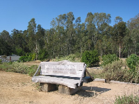 A place to sit at a trail entrance on Coronado Dr- see the eucalyptus forest behind.