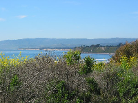 View of Ellwood Beach.