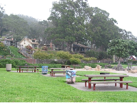 Picnic tables and pretty hillside at Tidelands Park.