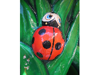 Ladybug detail in the play area.