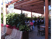 Cafe Habana looks like a relaxing spot. Check out their Kids Korner arts and crafts on weekends (call first).