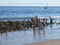 People chat by the tide pools at Miramar Beach.