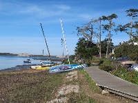 Wooden walkway and boats.