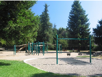 The playground, with lawn shaded by pines.