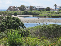 Looking across the lagoon to the Malibu Movie Colony where many famous people live.