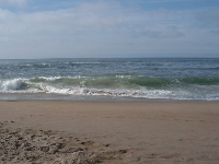 Pretty waves at the Guadalupe dunes.
