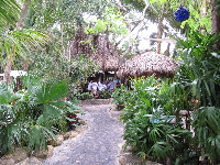 Pathway through the restaurant.