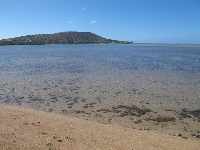Koko Head and clear water.