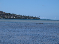 Portlock Point can be seen from the park.