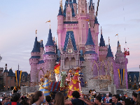 Nighttime performance in front of the pink-lit castle.