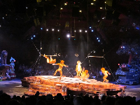 Orangutan acrobats in the Festival of the Lion King show.
