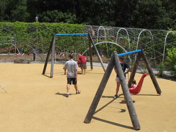 Area with all different kinds of swings.