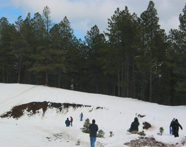 Crowley Pit, Arizona Snowbowl, Flagstaff, Arizona