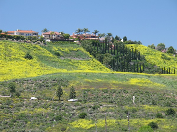 View from Kaleidoscope Center toward the Mission Viejo hills and Highway 5, springtime.