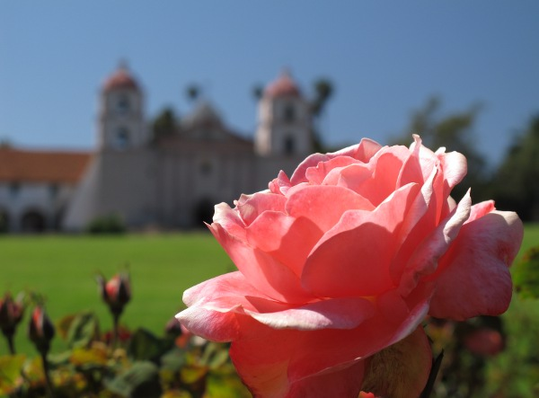 Mission Rose Garden, Santa Barbara California