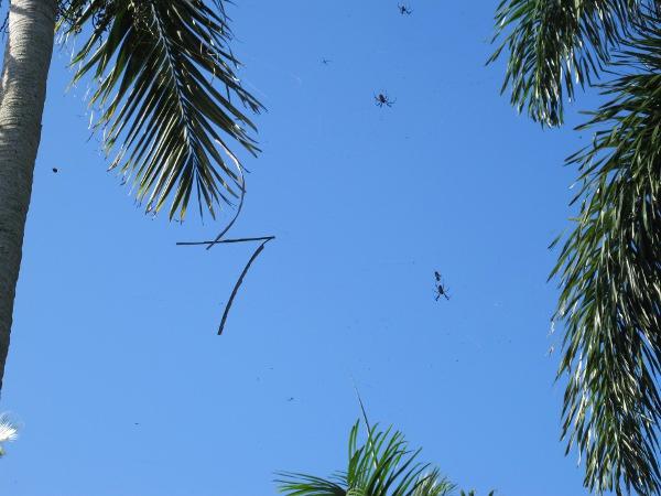 Mounts Botanical Garden West Palm Beach