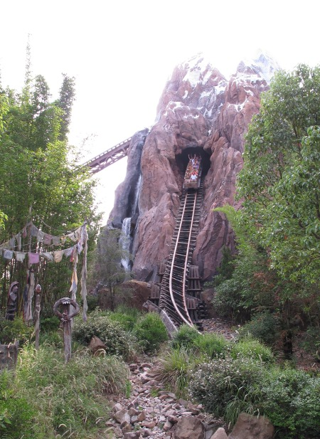 Expedition Everest takes you on quite a vertical drop!