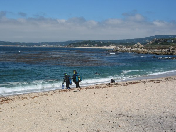 Carmel River State Beach, Monterey California
