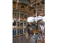 The antique carousel.