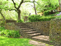 Stone staircase amongst the greenest green!