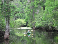 Kayakers enjoying the tranquil day.