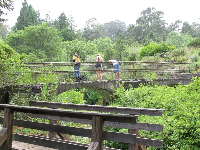 Visitors look down from a bridge.