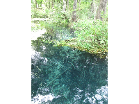 Clear waters near the blue hole.