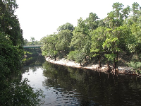 The Suwannee River, as seen from White Sulphur Spring bathhouse ruins.