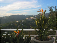 View of LA's hills, and gorgeous Bird of Paradise plants, on the balcony near the entrance of the Getty Center.