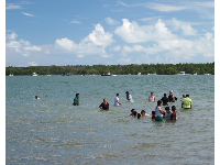 Families swimming, with Key Biscayne in the distance.